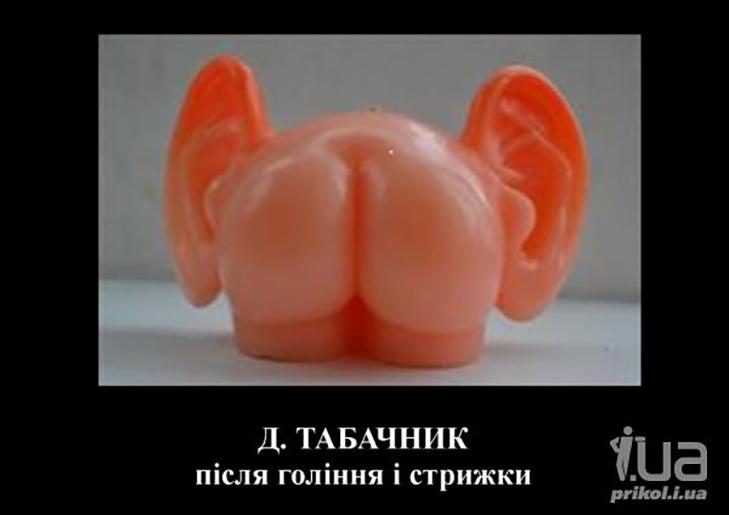 Дмитро Табачник (ФОТОЖАБИ) - фото 8
