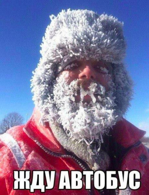 Як Київ замело снігом  - фото 5