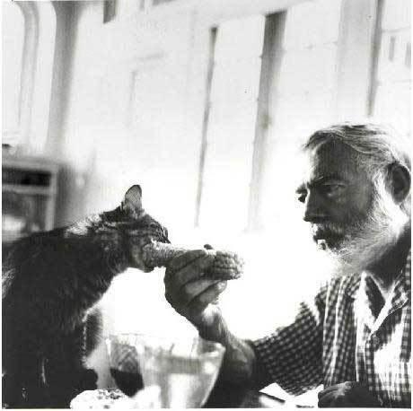 Котофілія у XIX столітті: Як раніше обожнювали котиків - фото 6