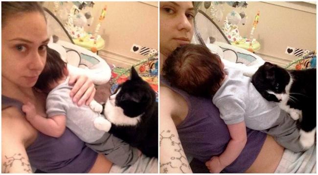 Як кішка полюбила малюка своєї власниці, ще до його народження - фото 4