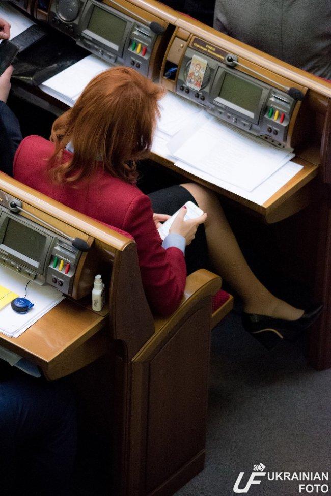 Депутат Тимошенко бідкається чоловіку на елекстронні декларації - фото 1