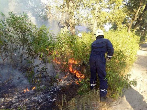 Як вигорів Труханів острів у Києві - фото 3