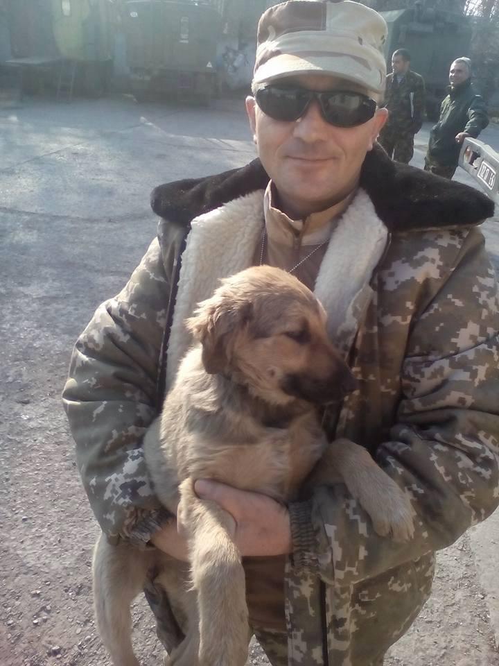 Чим займаються на Донбасі найкращі друзі бійців АТО - 2 - фото 9