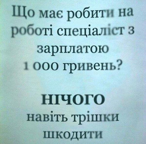 Як Яценюк саджанцями яблунь торгував та чим має займатися спеціаліст з зарплатою 1000 грн - фото 10