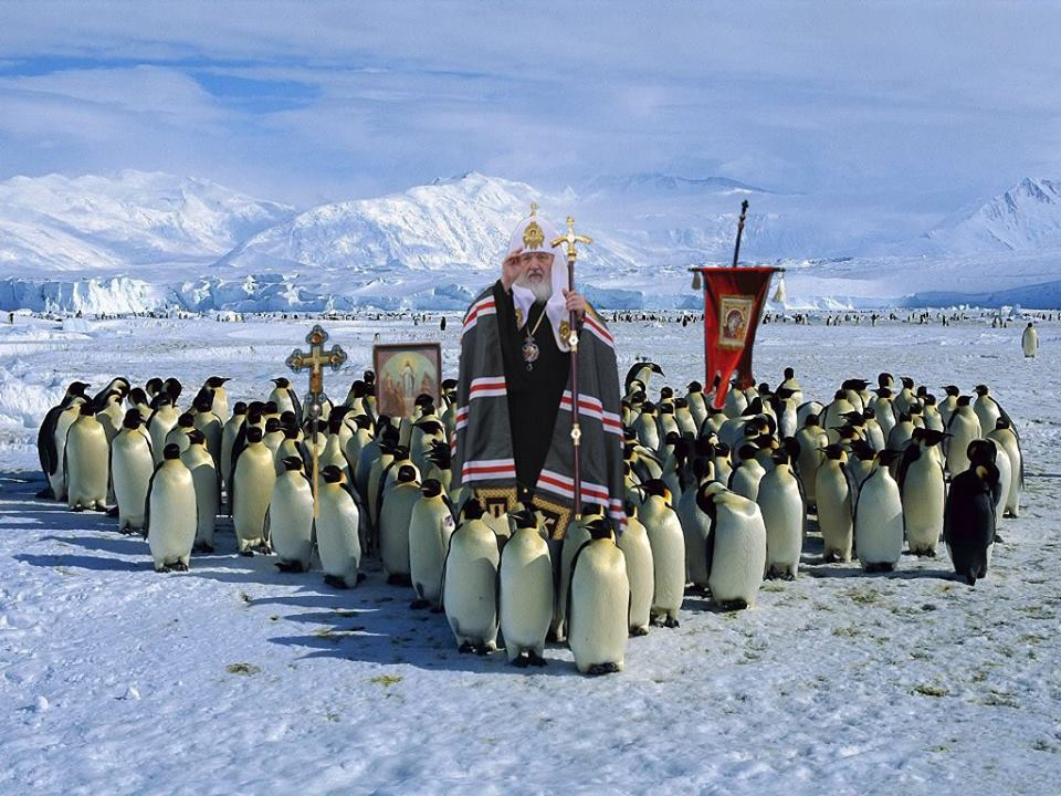 Як Гундяєв пінгвінів в Антарктиді хрестив (ФОТОЖАБИ) - фото 14