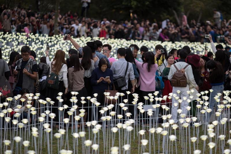 У Гонконзі запалили 25 тис білих троянд - фото 1