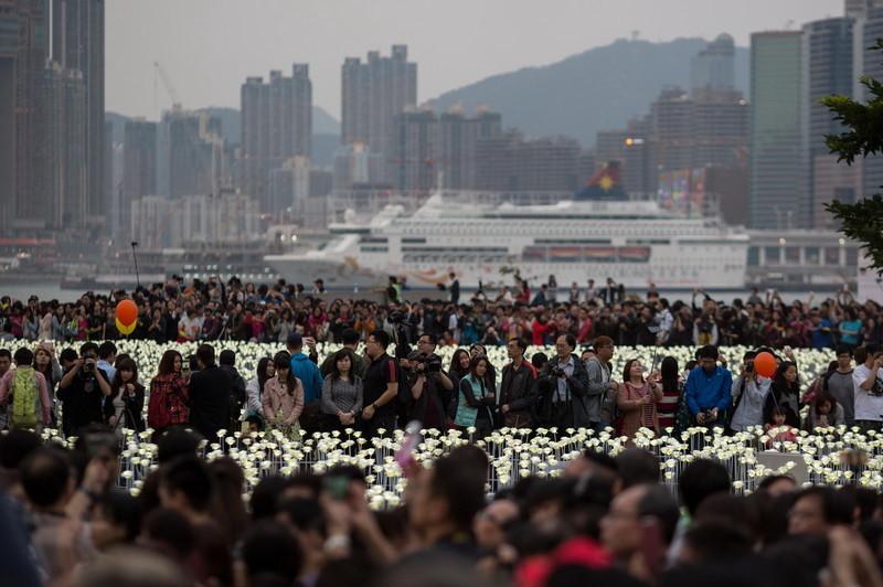 У Гонконзі запалили 25 тис білих троянд - фото 2