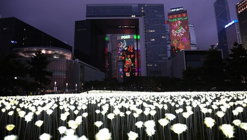 У Гонконзі запалили 25 тис білих троянд - фото 6
