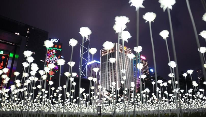 У Гонконзі запалили 25 тис білих троянд - фото 7