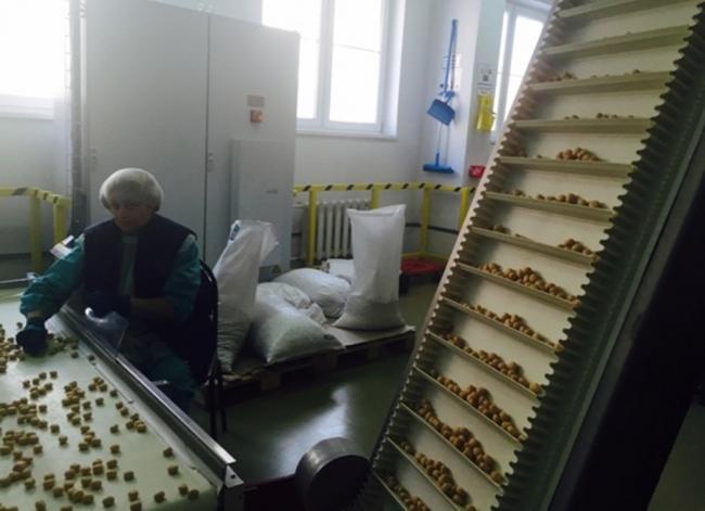 Журналісти показали, як працює фабрика Roshen у Липицьку - фото 1