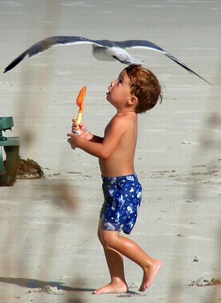 30 дивних і кумедних пляжних фотографій - фото 6