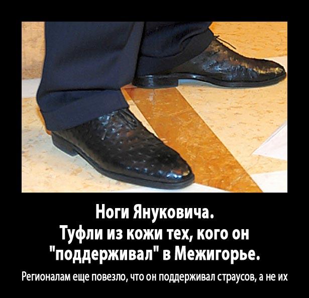 Як Янукович давав інтерв'ю ВВС (ФОТОЖАБИ) - фото 3