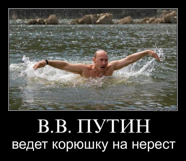 10 причин, чому Порошенко схожий на Обаму і не схожий на Путіна - фото 33