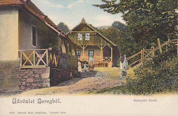 Де відпочивали і лікувалися на Закарпатті 100 років тому - фото 5