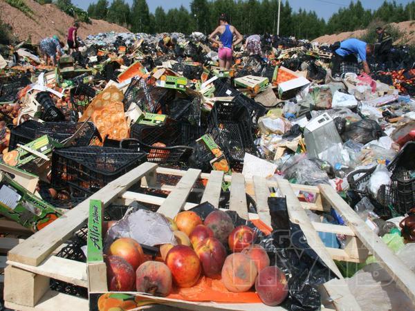 Росіяни шукають серед сміття недочавлені санкційні продукти  - фото 2