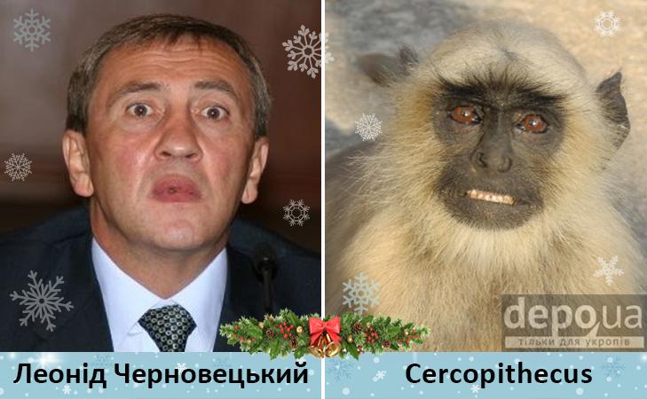 Політики та мавпи - фото 8