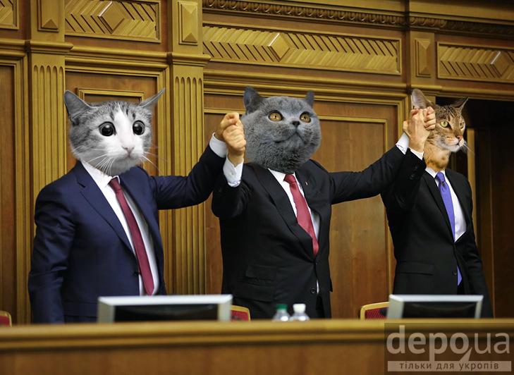 Чому українською державою мають керувати коти (ФОТОЖАБИ) - фото 1