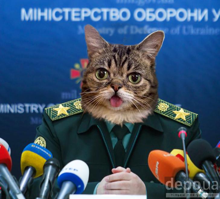 Чому українською державою мають керувати коти (ФОТОЖАБИ) - фото 5