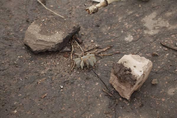 """Патрони, снаряди та грязюка - як виглядають дороги """"Лугандонії"""" - фото 1"""