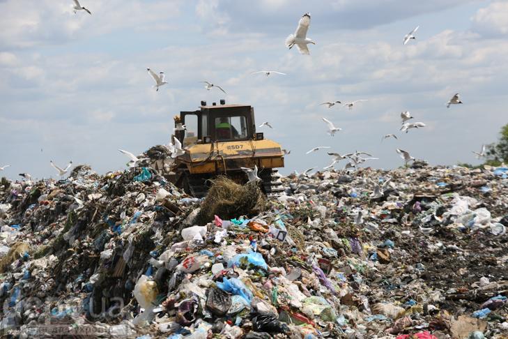 Табір йде… у Підгірці: як роми захопили головне сміттєзвалище Києва - фото 10