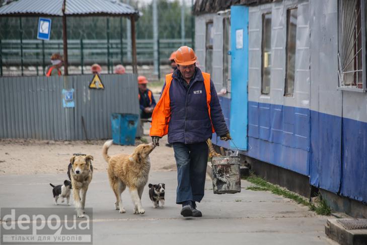 Чорнобиль - фото 1