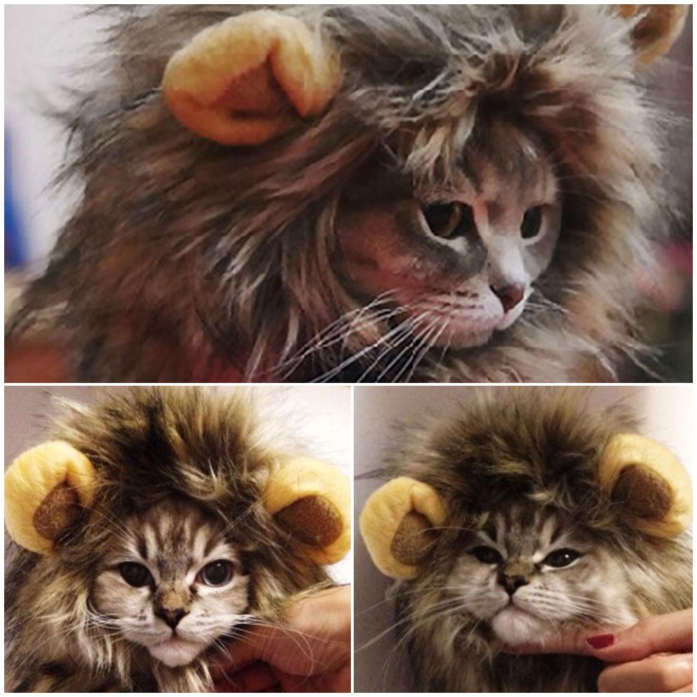 Підвіска на дупу і облизувач: ТОП-5 кумедних девайсів для котів - фото 5