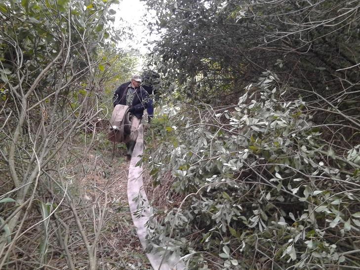 Ліквідація пожежі на Деражнянщині триває  - фото 1