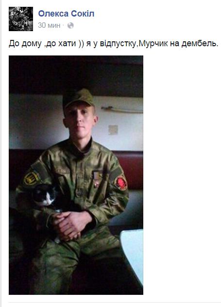 Як пухнастий Донбас розселяється Україною - фото 14