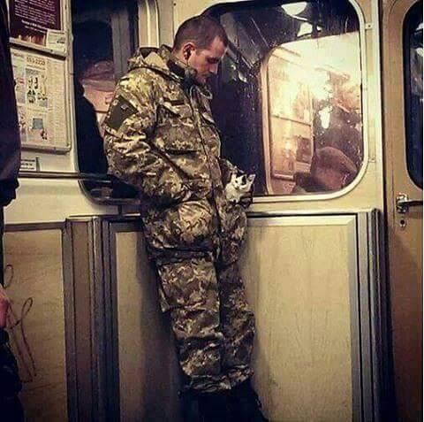 Як пухнастий Донбас розселяється Україною - фото 13