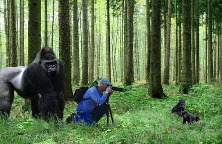"""30 фото """"за секунду до..."""" - фото 2"""