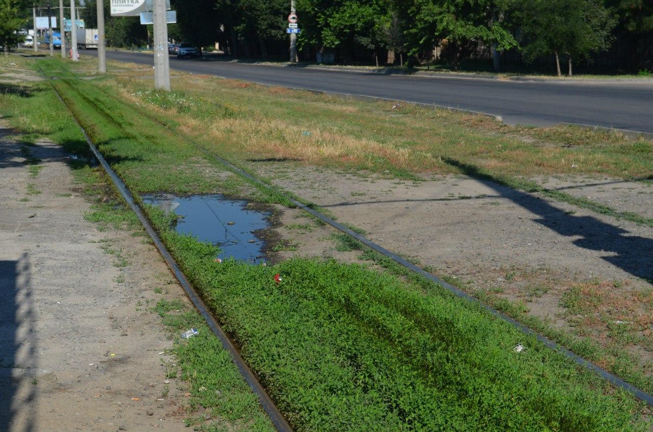 У Миколаєві біля трамвайної зупинки вже два тижні тече каналізація