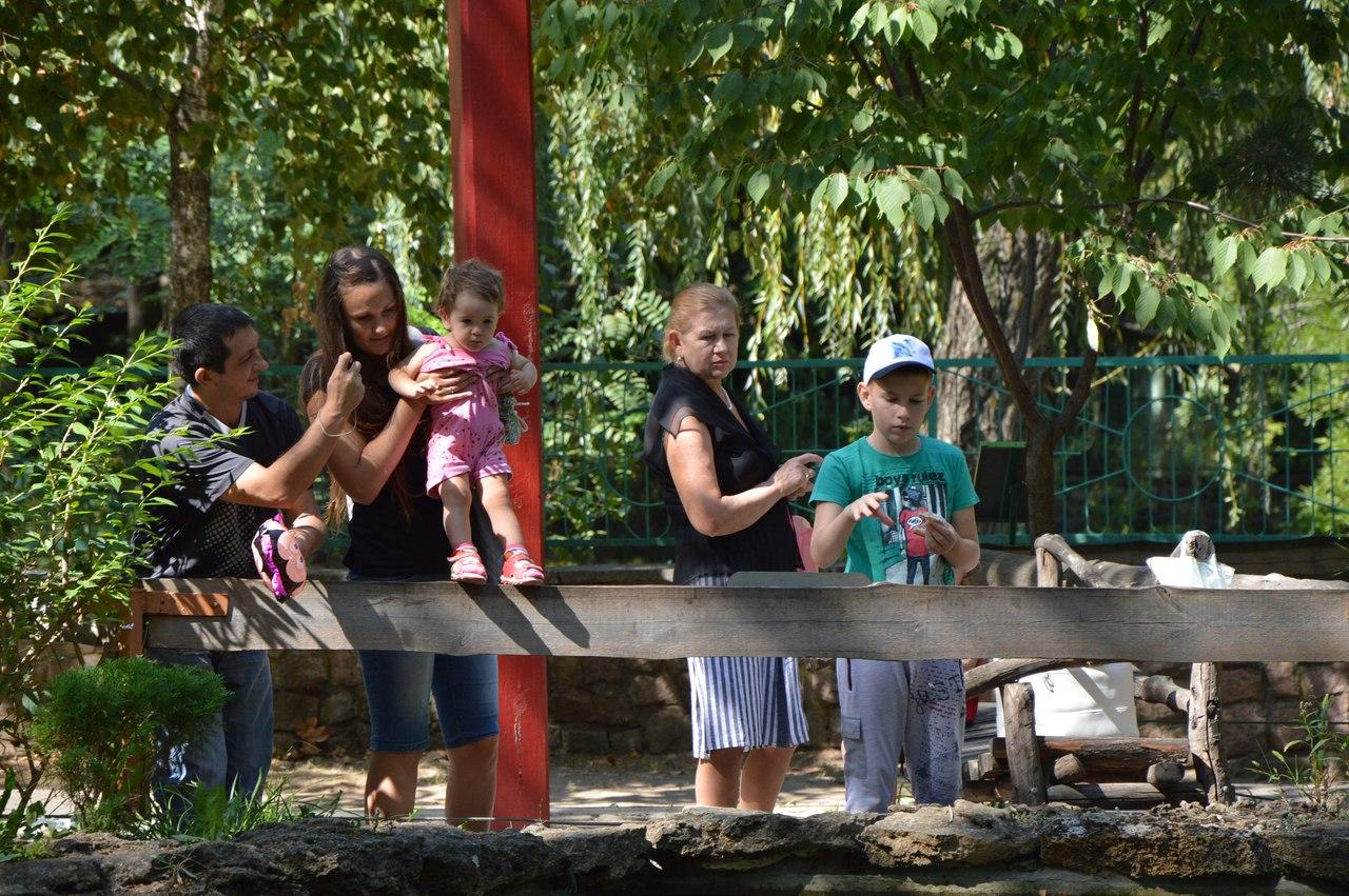 Як звірі у Миколаївському зоопарку поздоровляли городян з Днем міста - фото 8