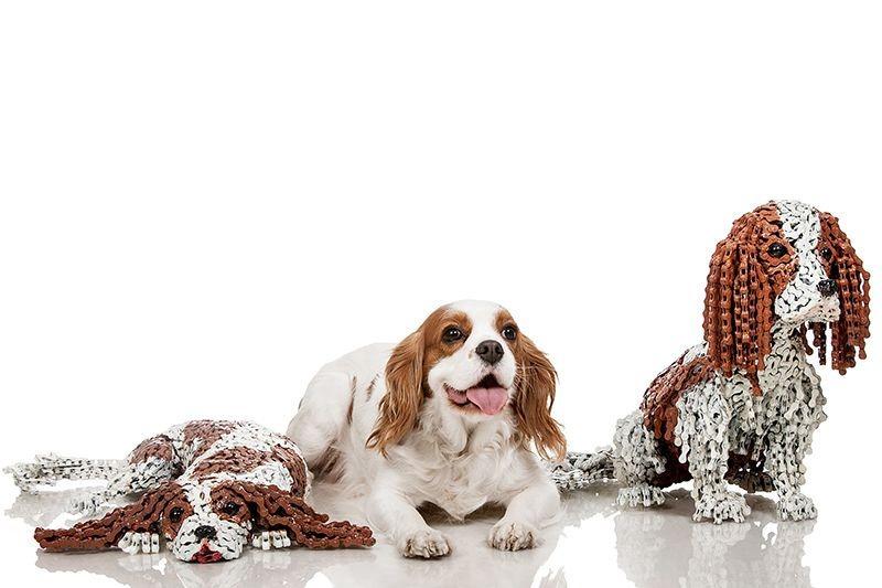 Як виглядають собаки в справжню величину, зроблені з велосипедів  - фото 5