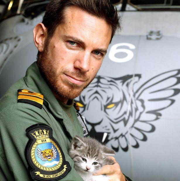 Крихітне кошеня подолало 500 км, заховавшись під бампером - фото 3