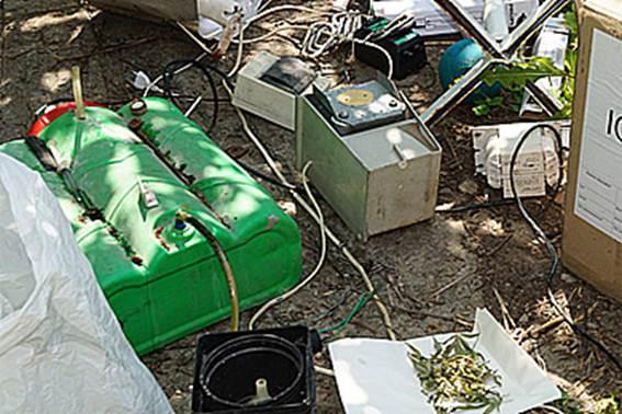 На Луганщині зловили диверсанта-наркоділка - фото 1