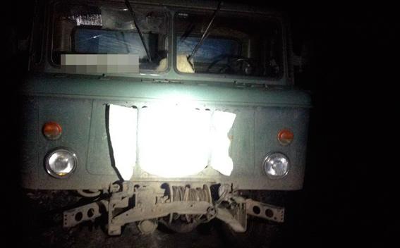 Житомирських старателів затримали під час незаконного видобутку бурштину - фото 2