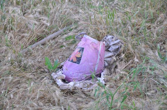На Миколаївщині 21-річна матір не знала, що робити з мертвим немовлям і закопала його