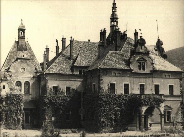 Де відпочивали і лікувалися на Закарпатті 100 років тому - фото 15