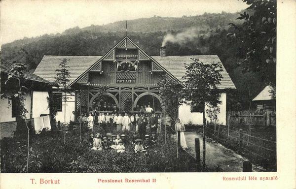 Де відпочивали і лікувалися на Закарпатті 100 років тому - фото 7