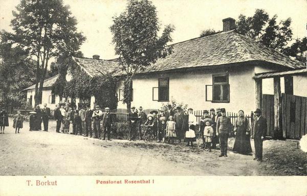 Де відпочивали і лікувалися на Закарпатті 100 років тому - фото 6