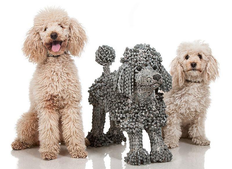 Як виглядають собаки в справжню величину, зроблені з велосипедів  - фото 4