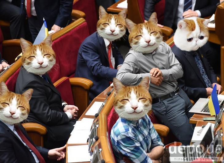 Чому українською державою мають керувати коти (ФОТОЖАБИ) - фото 2