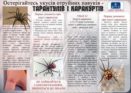На Миколаївщині вже є постраждалі від укусів каракуртів