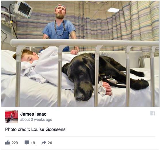 Як хлопчик, який ні з ким не говорить, лежав у лікарні з собакою  - фото 2