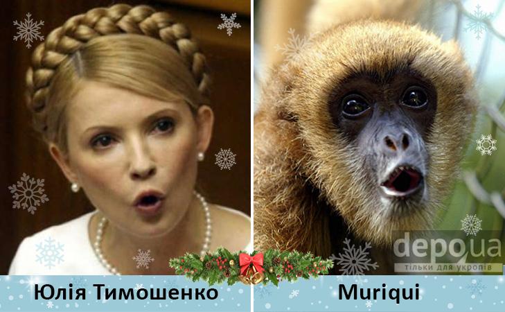 Політики та мавпи - фото 6