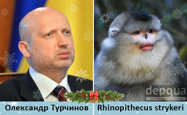Політики та мавпи - фото 7