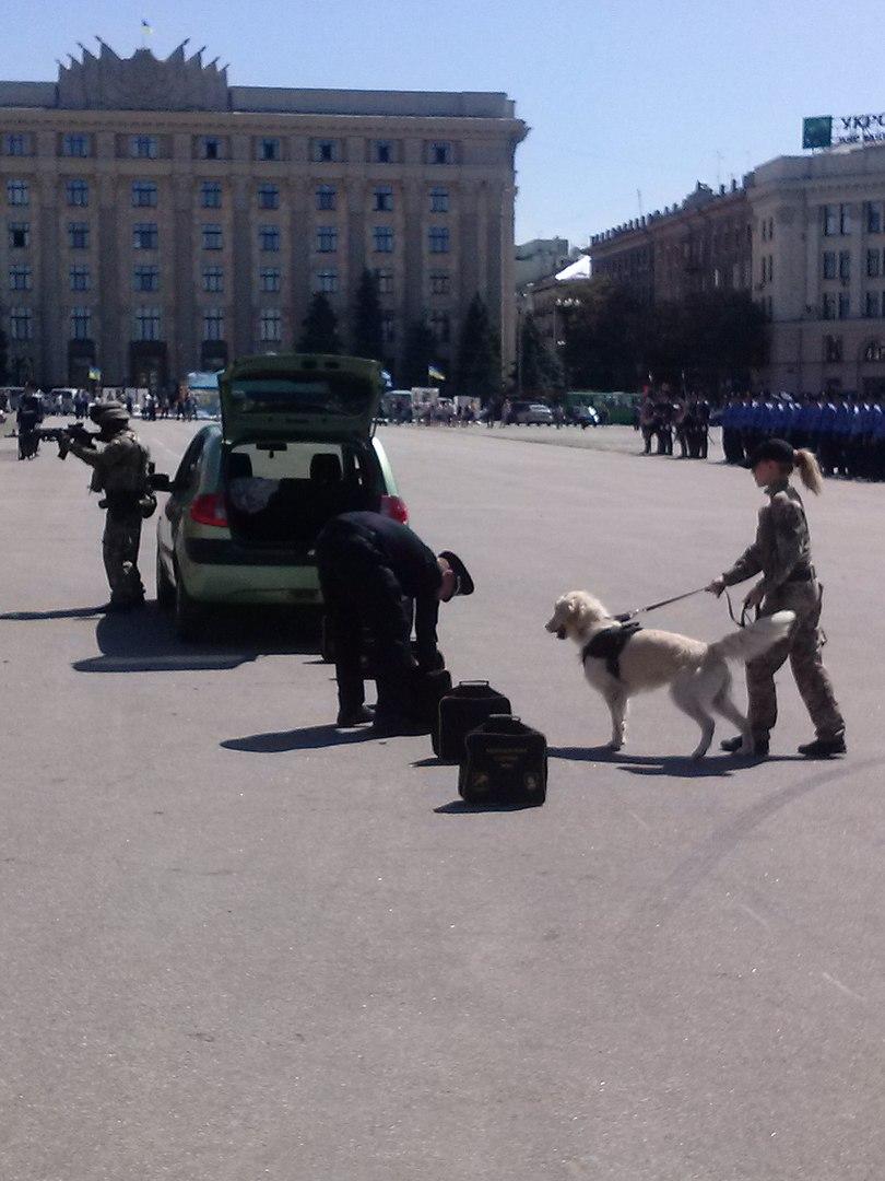 Як у Харкові святкують річницю Національної поліції  - фото 5