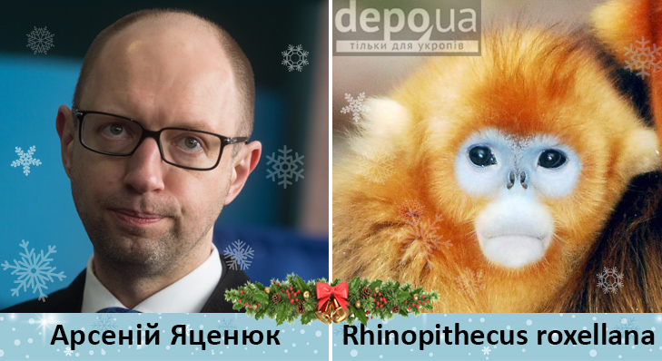 Політики та мавпи - фото 5