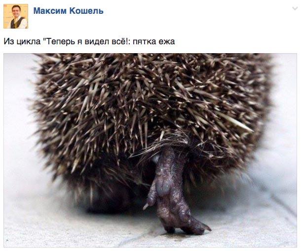 Як Генпрокуратура піде обшукувати YouTube, а міністр Ніщук валяти титановий пам'ятник - фото 12