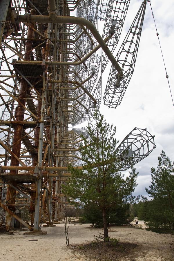 Чорнобиль-30: І під АЕС буде енергетична верба рости - фото 34